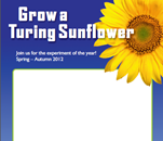 Grow a Turing Sunflower poster
