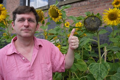 Jonathan with thumbs up next to a sunflower head that is ready for measuring and counting