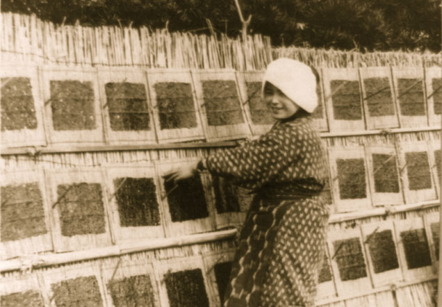 A woman stands on front of a bamboo wall. Squares of flattened seaweed are propped against it.