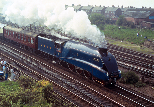 The blue Mallard steam train travels along the rail with stream billowing from its chimney.