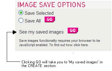 Fig 03: Image save options
