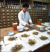 Image: Traditional Chinese herbal medicines are prepared in local clinics as well as hospital pharmacies, like this one in Taiwan