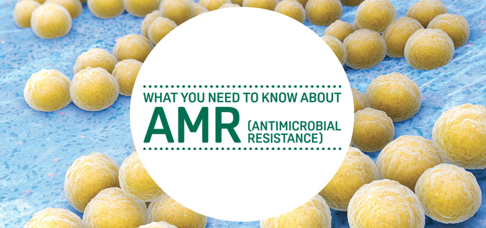 What you need to know about AMR (antimicrobial resistance)